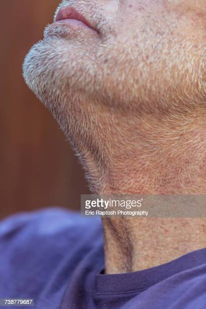 Close up of chin and beard of Caucasian man looking up