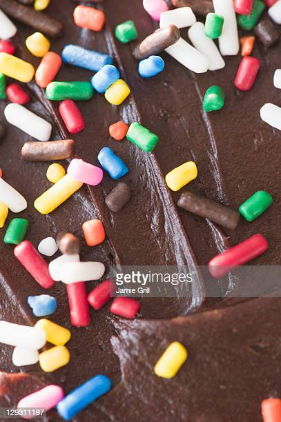 Close up of chocolate cake with sprinkles