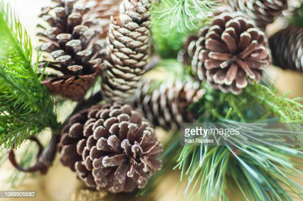 a close up of christmas decoration - pinecone stock pictures, royalty-free photos & images