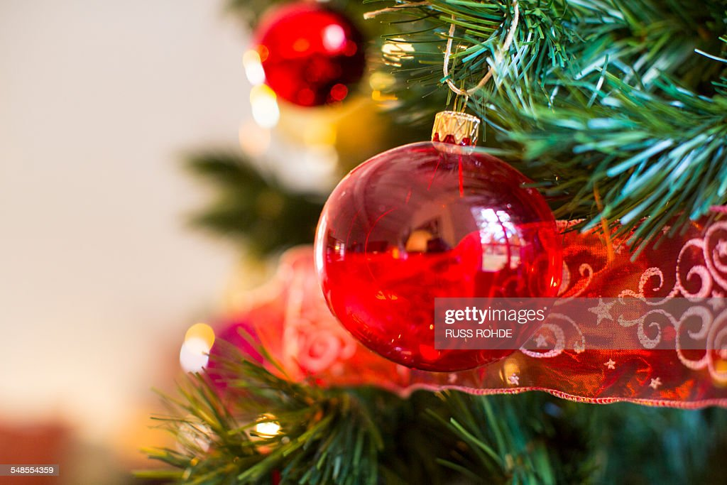 Close up of christmas tree with red baubles : Stock Photo