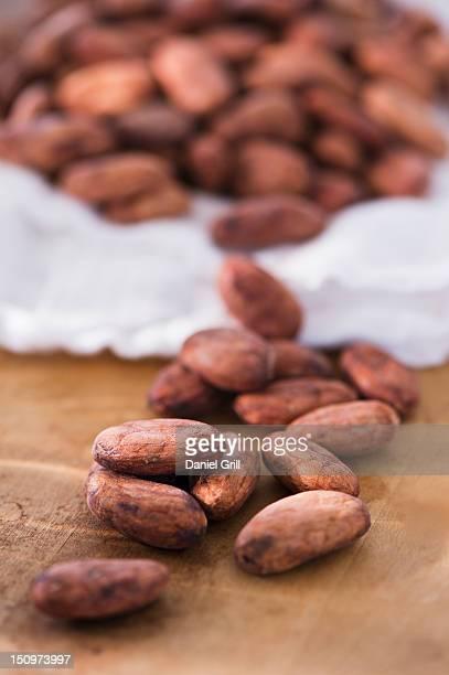 Close up of cocoa beans, studio shot