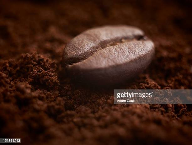 close up of coffee bean on ground coffee - ground coffee - fotografias e filmes do acervo
