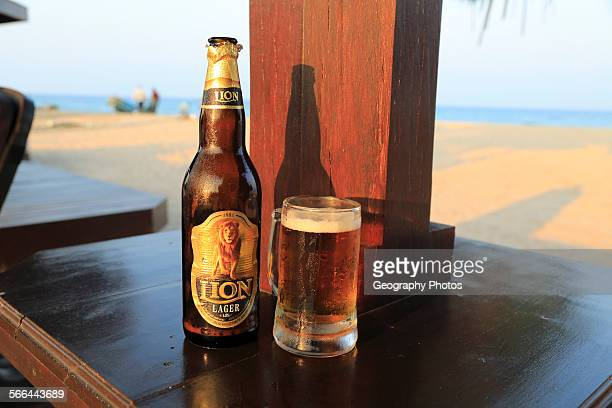 Close up of cold glass and bottle of Lion lager beer Sri Lanka Asia