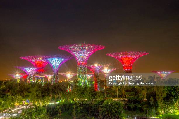 close up of colorful lighting show that is illuminated the super trees groove and the trees inside the garden by the bay at night. - copyright by siripong kaewla iad stock photos and pictures
