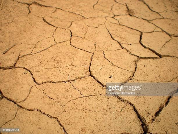 Close up of cracked mud