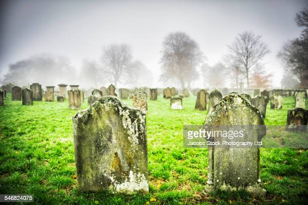 close up of dilapidated gravestones in cemetery - grabmal stock-fotos und bilder
