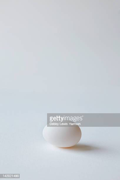 Close up of egg on countertop