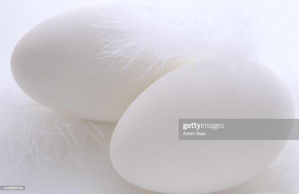 Close up of eggs : Stock Photo
