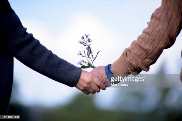 close up of elderly man and woman standing outdoors, holding hands. - 80代 ストックフォトと画像