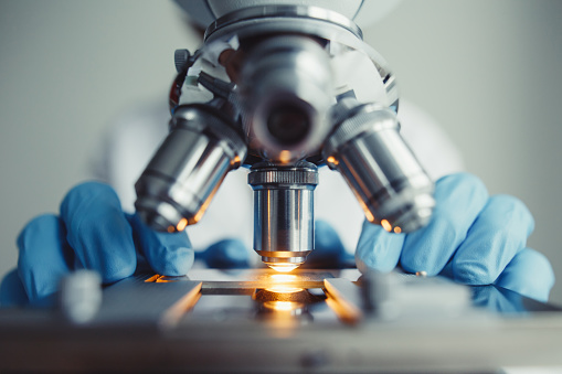 Close up of examining of test sample under the microscope 911834392