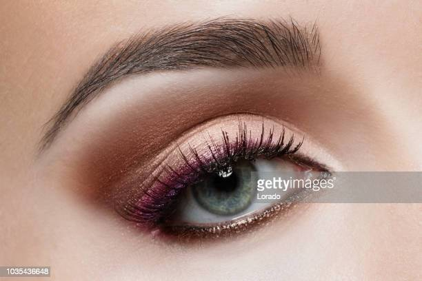 close up of eye and makeup - eye make up stock photos and pictures
