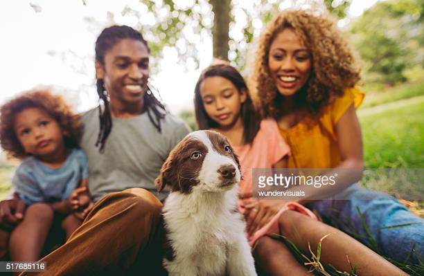 Close up of family enjoying new adorable fluffy border collie