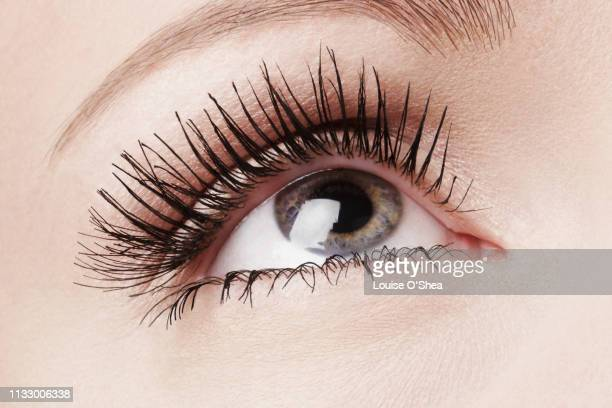 close up of female eye - mascara stock pictures, royalty-free photos & images