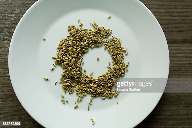 Close up of fennel seeds in circle on plate
