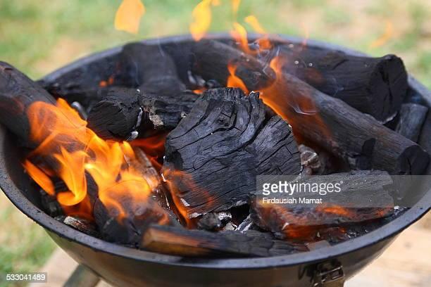 Close up of Firewood Burning