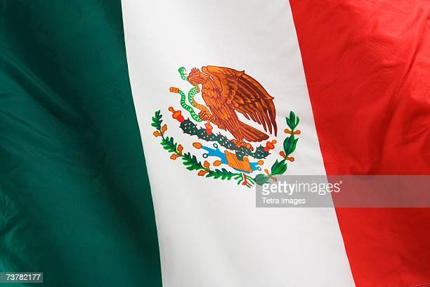 close up of flag of mexico - bandera mexicana fotografías e imágenes de stock
