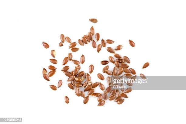 close up of flax seeds isolated on white background - flax seed stock pictures, royalty-free photos & images