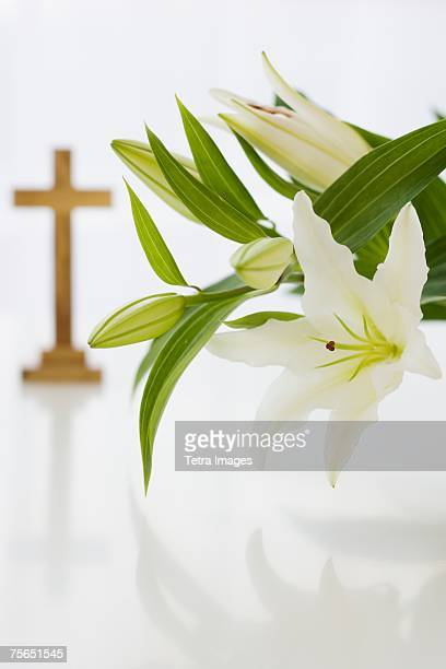 close up of flowers with cross in background - crosses with flowers stock pictures, royalty-free photos & images