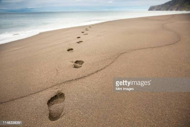 close up of footprints in beach sand - footprint stock pictures, royalty-free photos & images
