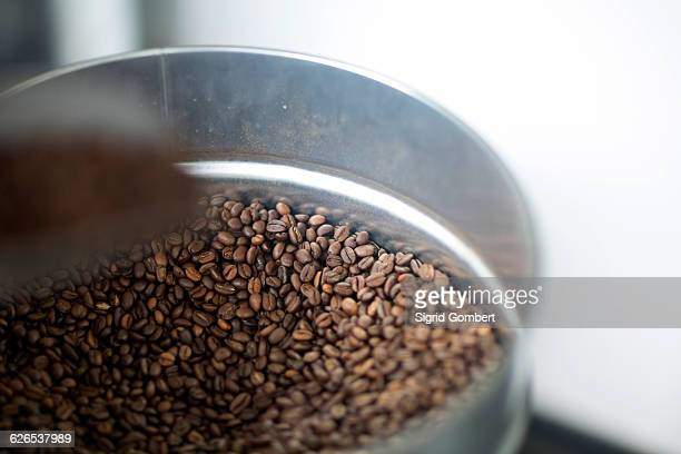 close up of fresh coffee beans in tin - sigrid gombert stockfoto's en -beelden