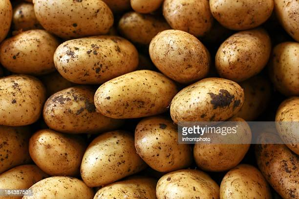 close up of fresh potatoes - raw potato stock pictures, royalty-free photos & images
