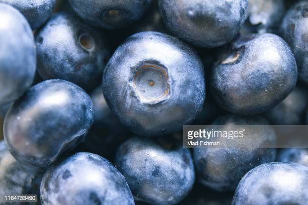 close up of fresh raw blueberries - juicy stock pictures, royalty-free photos & images