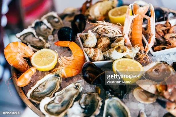 close up of fresh seafood on ice plate - seafood stock pictures, royalty-free photos & images