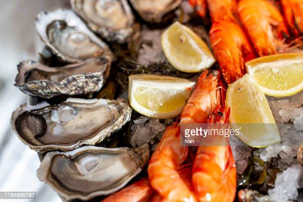 close up of fresh seafood on ice plate - exclusive stock pictures, royalty-free photos & images