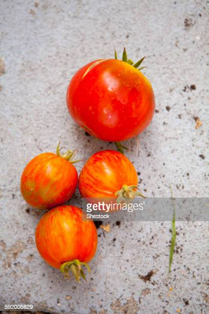 Close up of fresh tomatoes on concrete