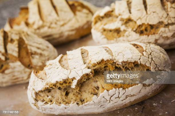 Close up of freshly baked loaves of bread