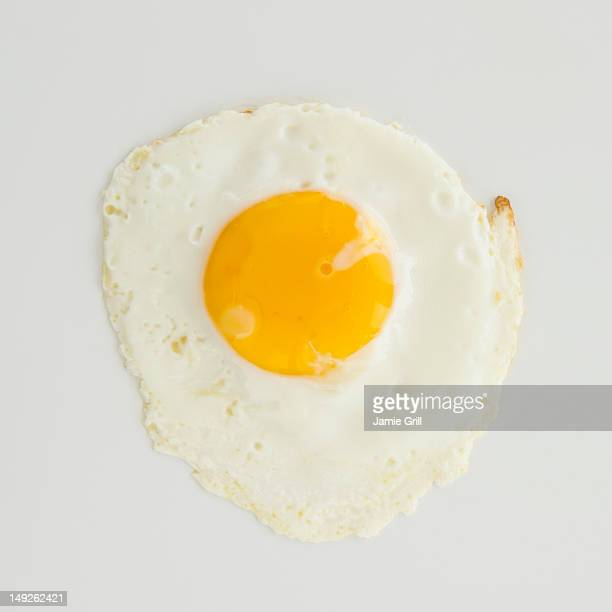 Close up of fried egg, studio shot