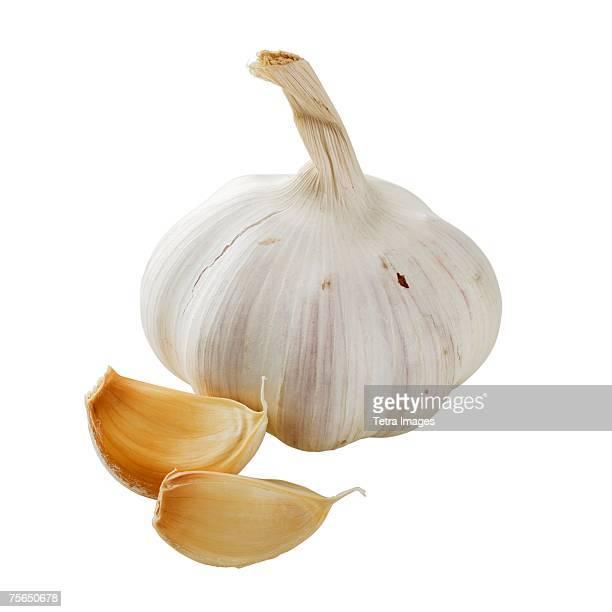 close up of garlic bulb and cloves - cabeza de ajos fotografías e imágenes de stock