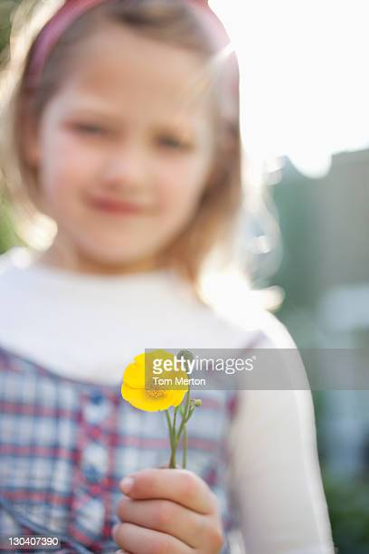 close up of girl holding flower - buttercup stock pictures, royalty-free photos & images