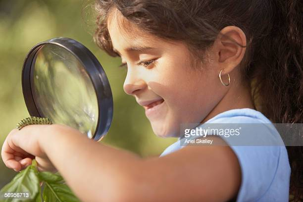close up of girl looking at caterpillar through magnifying glass - invertebrate stock photos and pictures