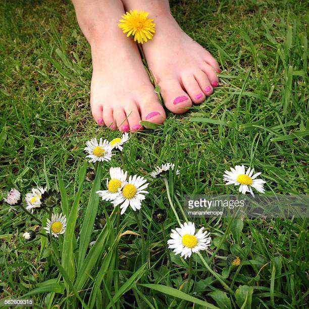 close up of girls feet in the summer grass with nail polish - pretty white girl feet stock photos and pictures