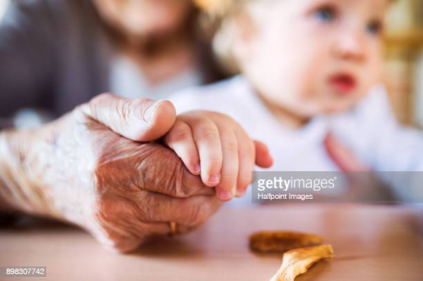 Close up of grandmother holding grandson´s hand and storing dried apples.
