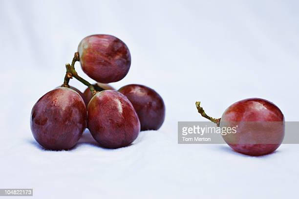 close up of grapes - druif stockfoto's en -beelden