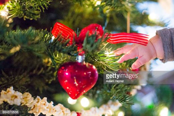 Close up of hand of Caucasian baby girl near Christmas tree