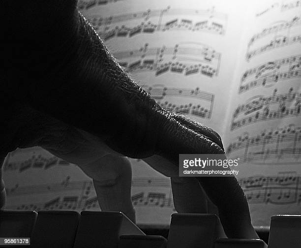 Close up of hand with piano