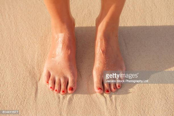 close up of hispanic woman's feet in sand on beach - pies descalzos mujer fotografías e imágenes de stock