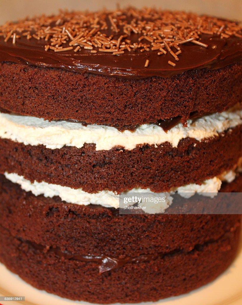 Plano aproximado de Feito em Casa Bolo de Chocolate com creme e ganache : Foto de stock