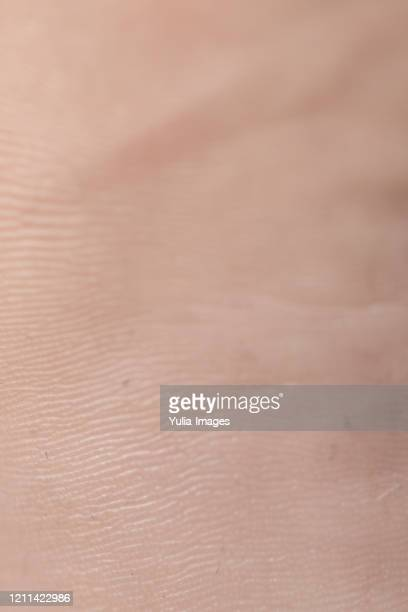 close up of human skin - anatomy stock pictures, royalty-free photos & images