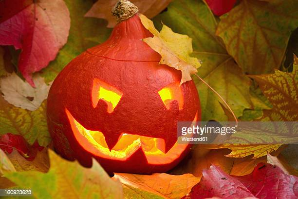 Close up of Jack O Lantern with maple leaves
