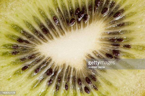 close up of kiwi slice - andrew dernie foto e immagini stock