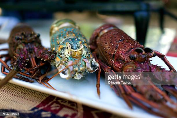 Close up of lobsters