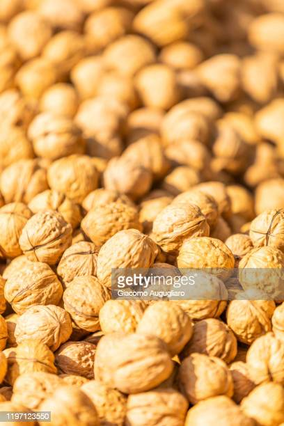 close up of local walnuts in the market of cefalù, palermo province, sicily, italy - giacomo palermo stock pictures, royalty-free photos & images