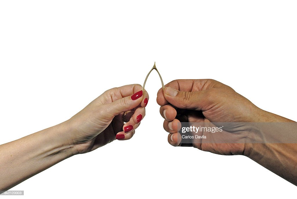 Close Up of Male and Female Hands Pulling a Wish Bone Against a White Background : Stock Photo