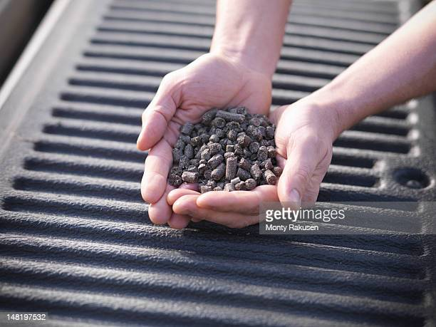 close up of man holding heap of sunflower pellets used as biofuel for burning in power stations - handful stock pictures, royalty-free photos & images