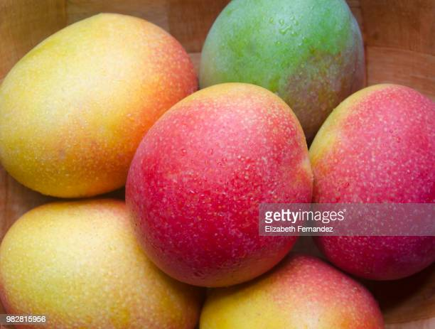 Close up of mangoes with waterdrops