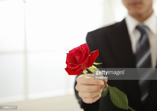 Close up of mans hand holding a rose